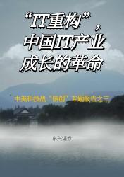 """计算机行业:""""IT重构"""",中国IT产业成长的革命   行业报告"""