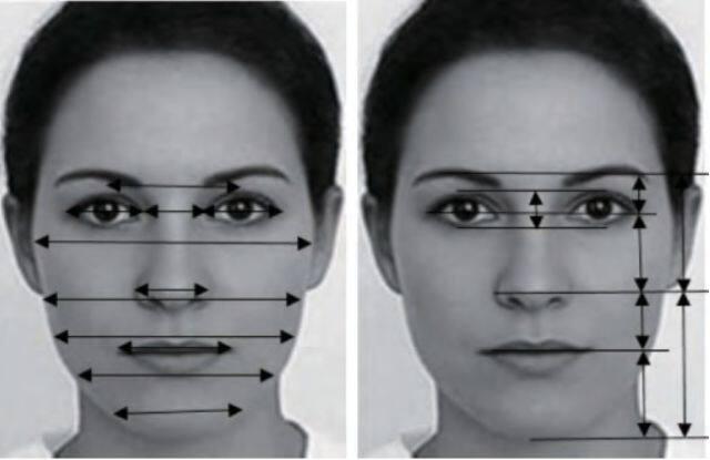 人脸颜值研究综述