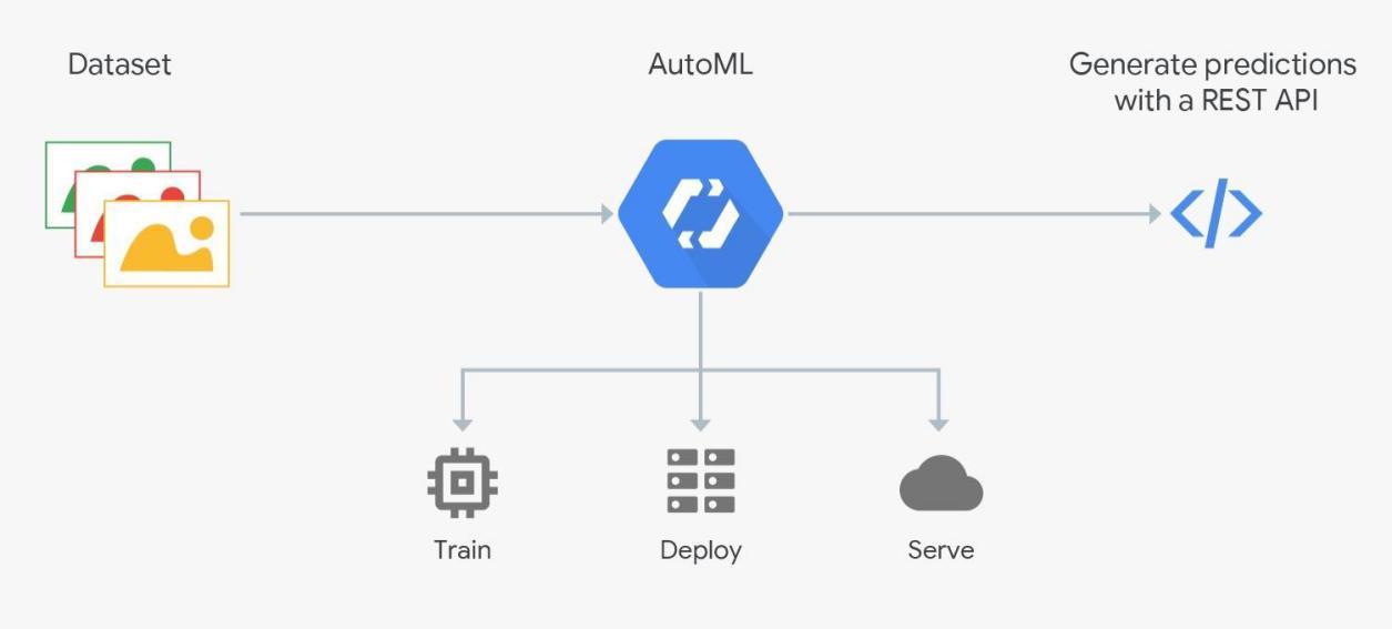 关于大规模机器学习与云原生架构,我们与谷歌云聊了聊