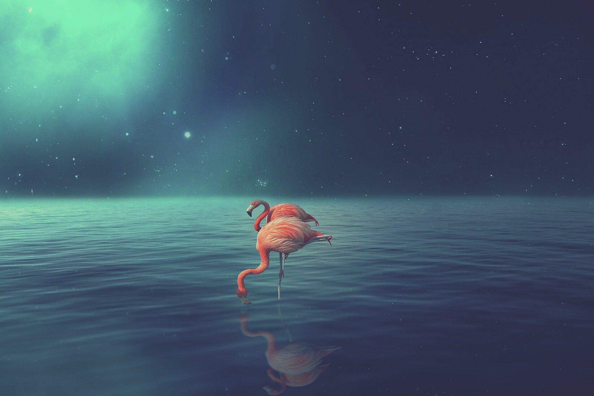 BigBird会是 NLP 的另一个重要里程碑吗?