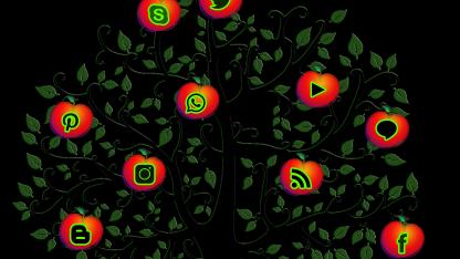 从处理器到软件生态体系,华为鲲鹏深入全产业链计算