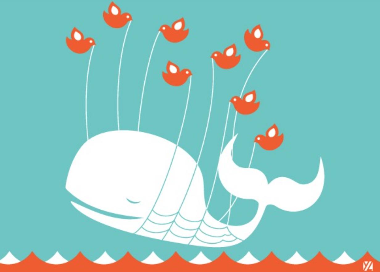 百花齐放,锄其九九——Twitter的技术坎坷之路