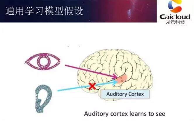 深度学习框架TensorFlow在Kubernetes上的实践