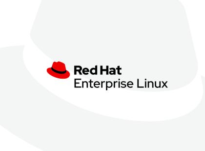 Spot 实例上的 RHEL:一种管理 Red Hat 实例成本的新方法