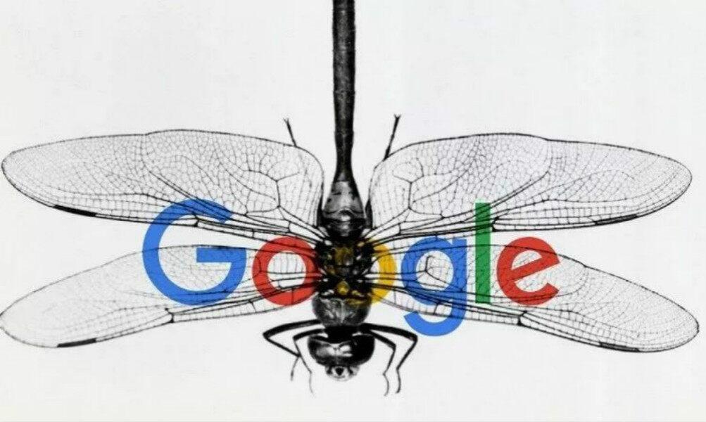 谷歌重返中国无望?官方确认蜻蜓计划彻底终止