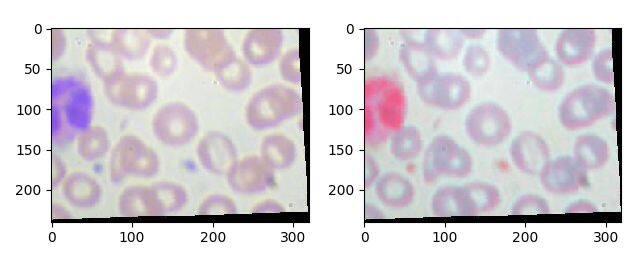 基于Pytorch的多类别图像分类实战